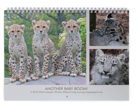 2018 baby calendar cover